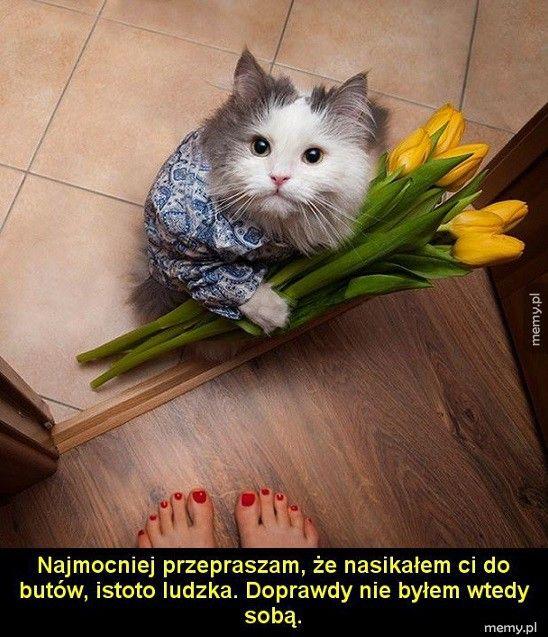 Wybacz mi!