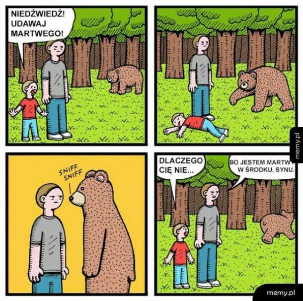 Ochrona przed niedźwiedziem