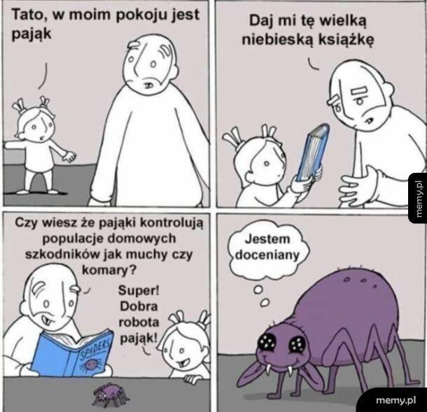 Nie zabijaj pajączków