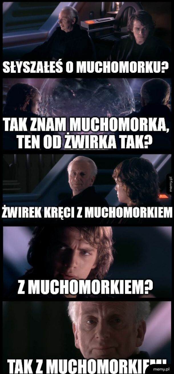 Słyszałeś kiedyś o tragedii Dartha Żwirka?
