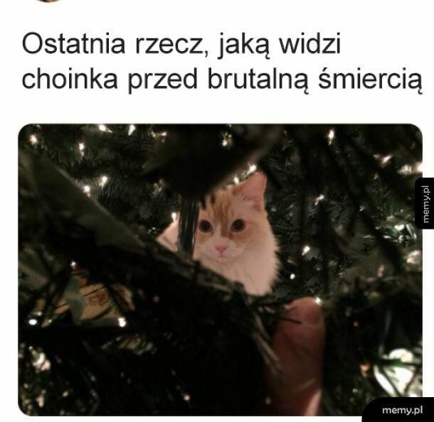 RIP Choinka 2020-2020