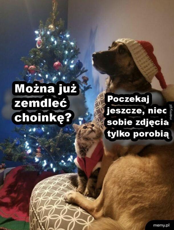 Łaskawi