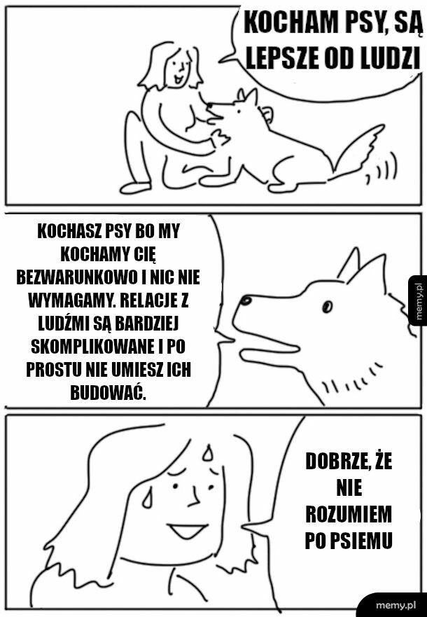 Tak to właśnie z psami jest