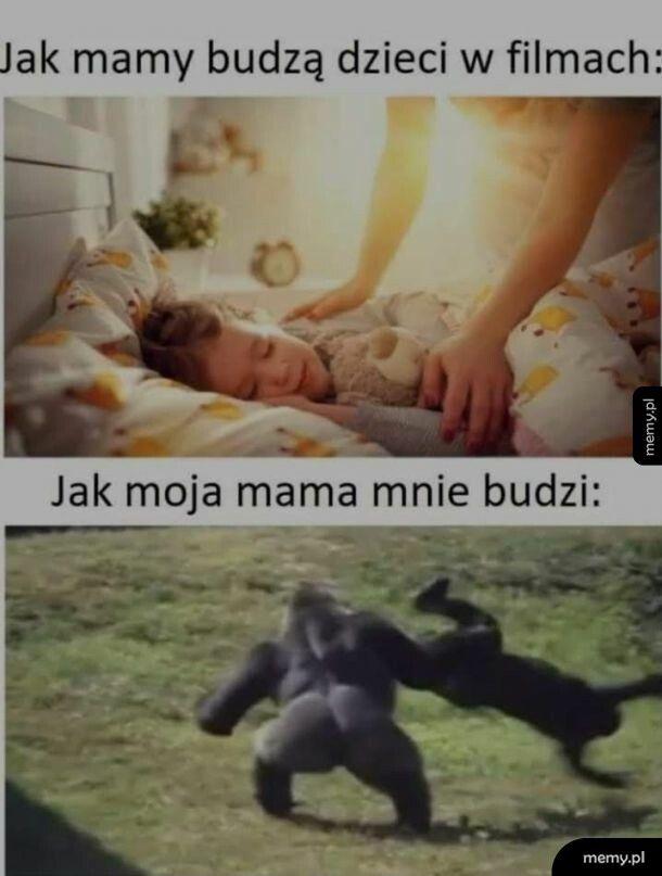 Typowa mama