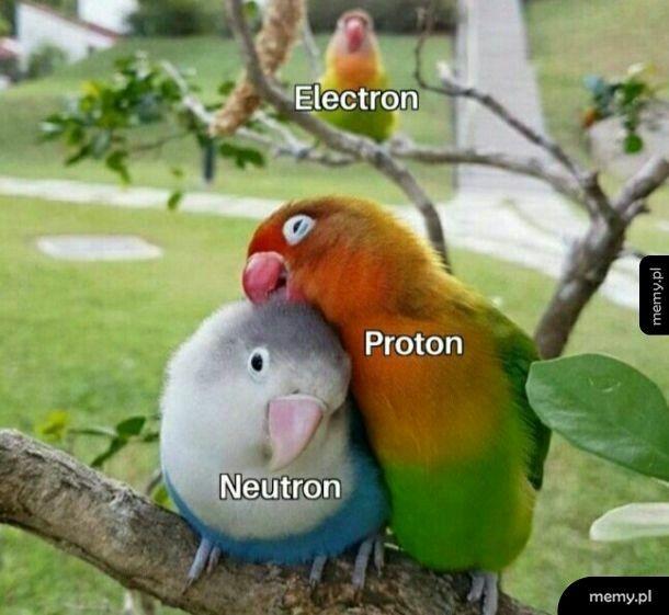 Nawet cząsteczkom atomowym nie jest łatwo