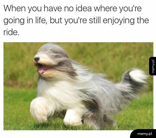Warto się cieszyć z małych rzeczy
