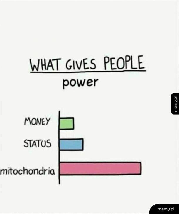 The Powerhouse