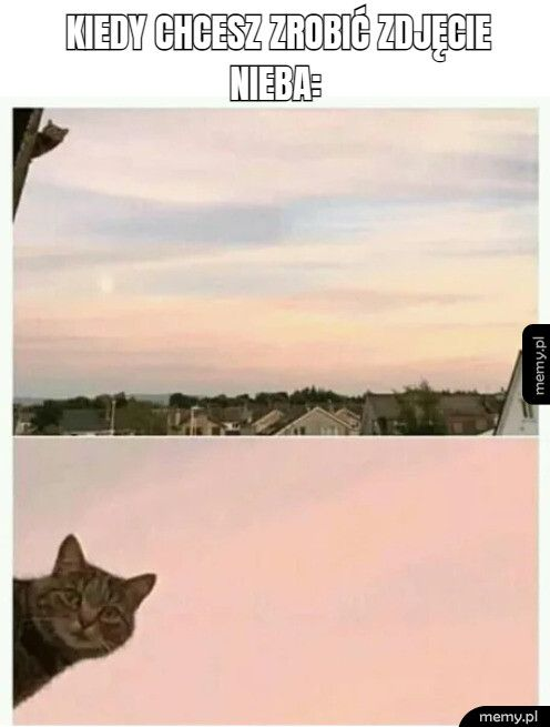 kiedy chcesz zrobić zdjęcie                    nieba: