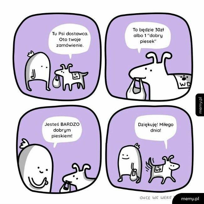 Psi dostawca