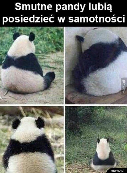 Smutne pandy