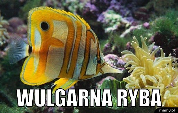 Wulgarna ryba.