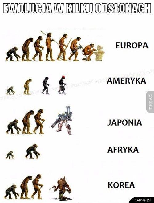 Ewolucja w kilku odsłonach