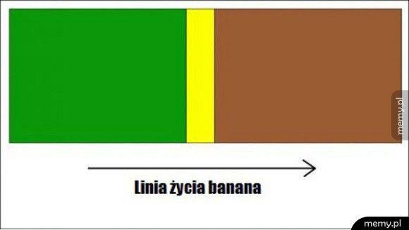 Życie banana