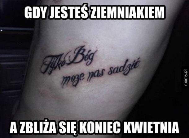 Janusze tatuażu
