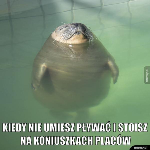 Kiedy nie umiesz pływać i stoisz na koniuszkach placów