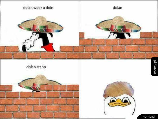 Dolan pls