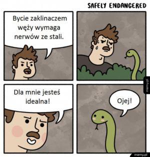 Bycie zaklinaczem węży wymaga nerwów ze stali
