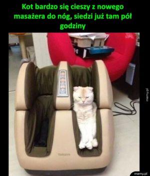 Zadowolony koteł