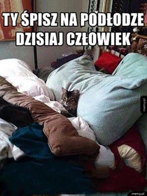 Śpisz na podłodze