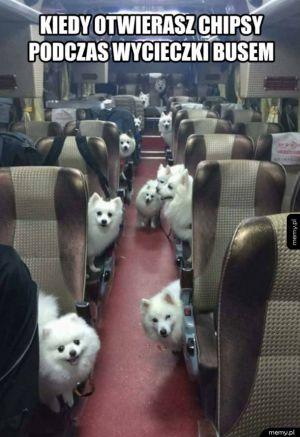 Kiedy otwierasz chipsy podczas wycieczki busem