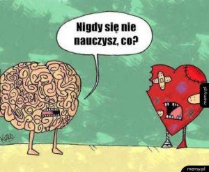 Serce i rozum