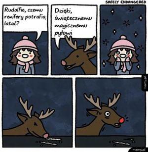 Magiczny pył