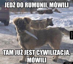 Jedź do Rumunii
