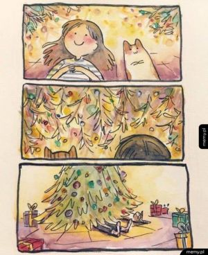Życie z kotem