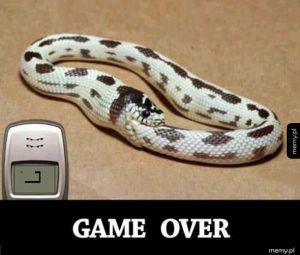Koniec gry dla węża