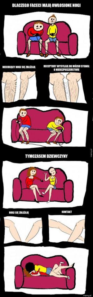 Dlaczego faceci mają owłosione nogi