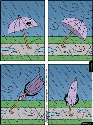 Historia pewnej parasolki