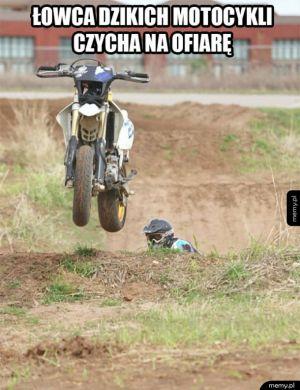 Łowca motocykli