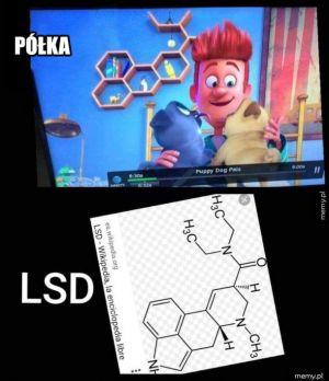 Tak się bawią w Disneyu