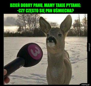 Zabawny wywiad
