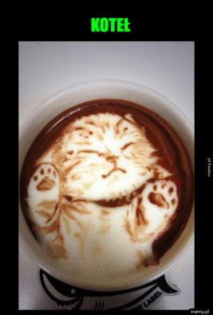 Oryginalna kawa