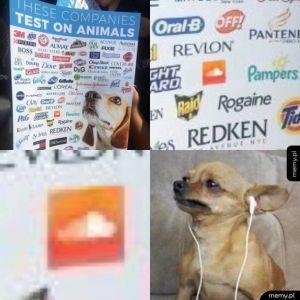 Testowane na zwierzętach