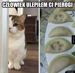 Koteł pomógł w kuchni