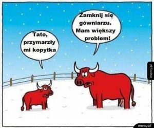 Kiedy napada śniegu