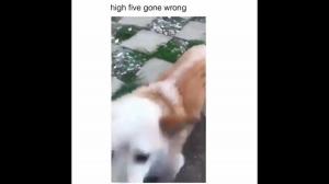 Przybij piątkę