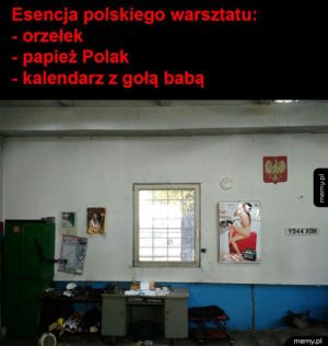 Typowy polski mechanik