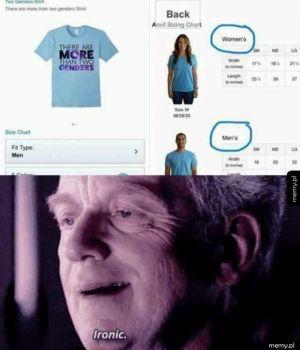 Ironia losu