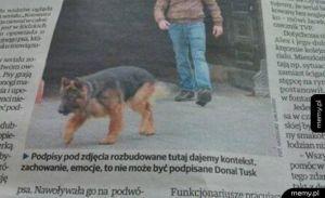 Wpadka w gazecie