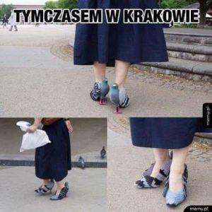 Krakowska moda