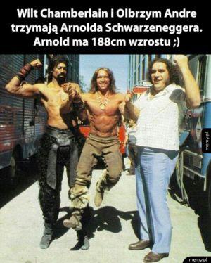 Duże chłopaki