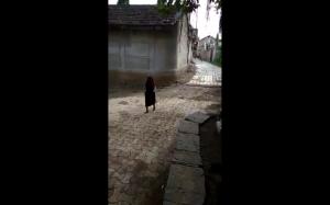Babcia sprząta podwórko