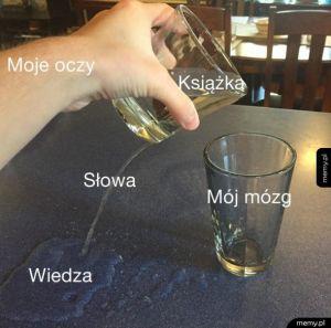 Ja i nauka