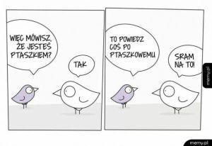 Język ptaków
