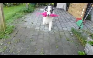 Taniec z parasolem