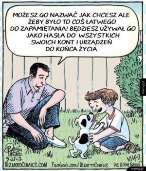 Imię dla psa