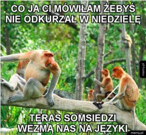 Polskie domy